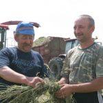 """В """"Дружбінцы"""" готовят по 400 тонн сенажа"""