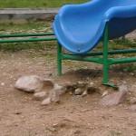 Осторожно — детская площадка!