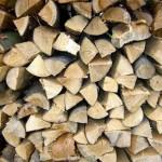 Кто в лес, кто по дрова