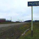 Россияне установят сосновый памятник пришельцам