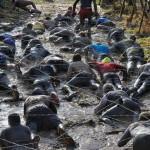 Британские мужчины 12 км ползали в грязи